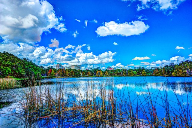 Orlando Southern Exposure